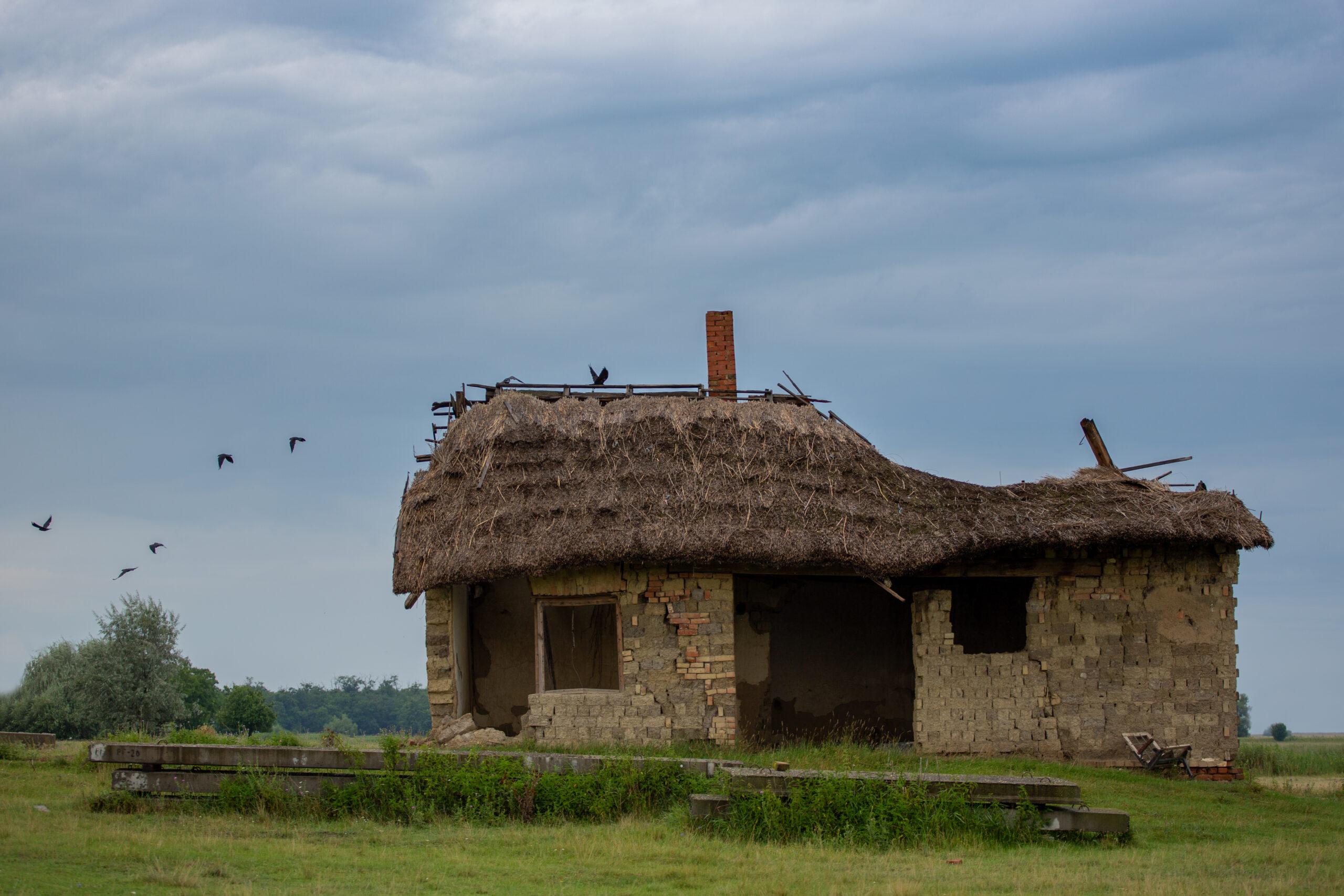 kényszerűség_fotópályázatos kép_Kasznár_Katalin_158_Utolsó menedék